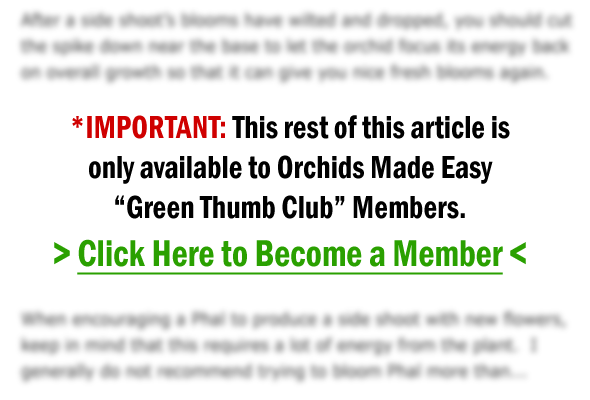 Green Thumb Club Members Only