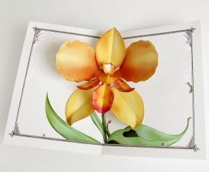 Crankbunny-Orchid card